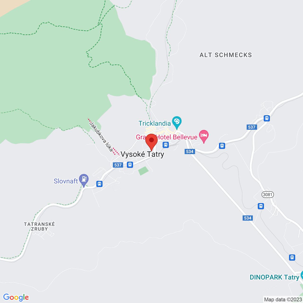 Mapa Kúpeľný Hotel Palace Grand*** Nový Smokovec